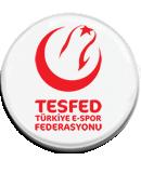 hepsigamer-logo
